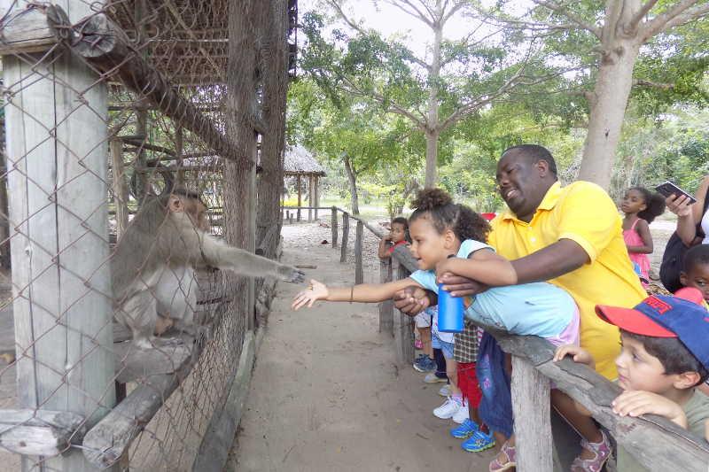 Visite au zoo slide 6