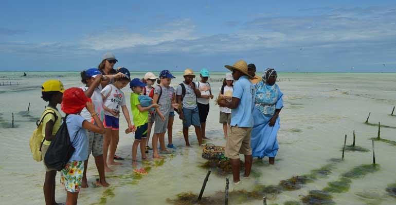 Classe de découverte à Zanzibar pour les CE2A